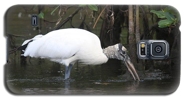 Galaxy S5 Case featuring the photograph Wood Stork In The Swamp by Christiane Schulze Art And Photography