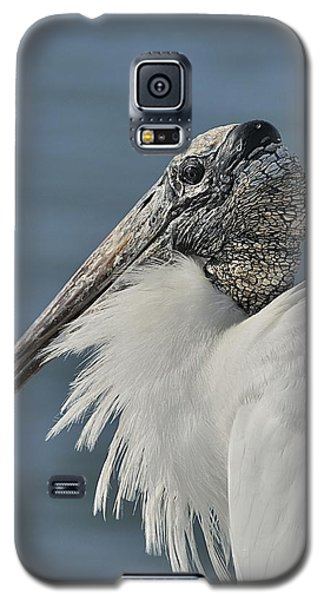 Wood Stork Portrait Galaxy S5 Case
