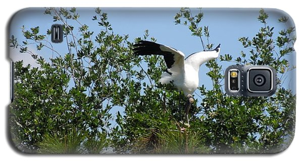 Galaxy S5 Case featuring the photograph Wood Stork by Ron Davidson