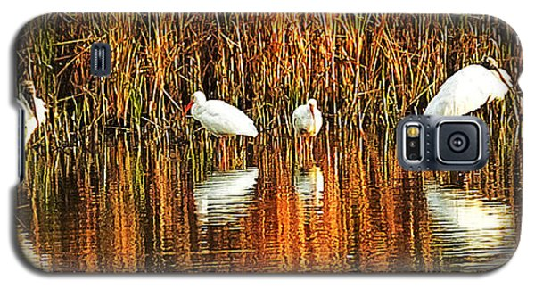 Wood Storks And 2 Ibis Galaxy S5 Case by Bill Barber