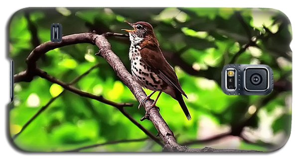 Wood Thrush Singing Galaxy S5 Case by Chris Flees