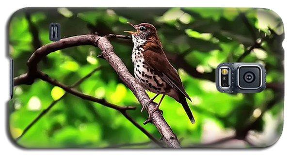 Wood Thrush Singing Galaxy S5 Case