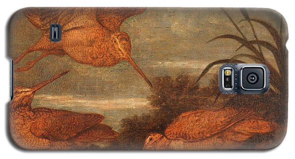 Woodcock At Dusk, Francis Barlow, 1626-1702 Galaxy S5 Case by Litz Collection
