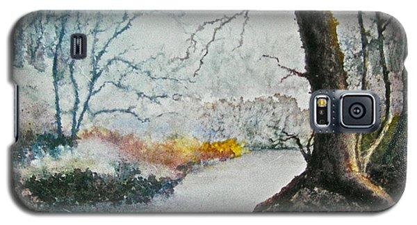 Wooded Stream Galaxy S5 Case