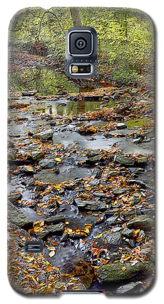 Woodland Brook In Fall Montgomery County Pennsylvania Galaxy S5 Case