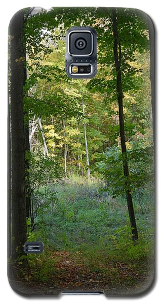 Woodland Path Galaxy S5 Case