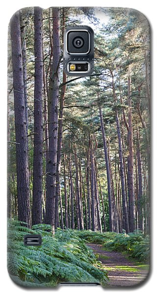 Galaxy S5 Case featuring the photograph Woodland Path by David Isaacson