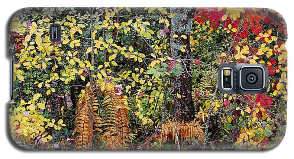 Woodland Tapestry Galaxy S5 Case by Alan L Graham