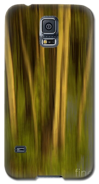 Woodland Tapestry Galaxy S5 Case by Sandi Mikuse