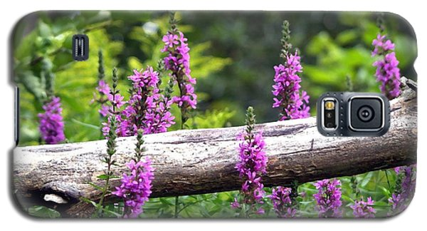 Galaxy S5 Case featuring the photograph Woodland Treasures by Susan  Dimitrakopoulos