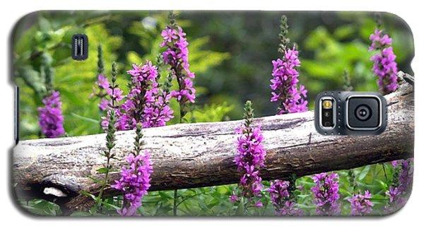 Woodland Treasures Galaxy S5 Case by Susan  Dimitrakopoulos