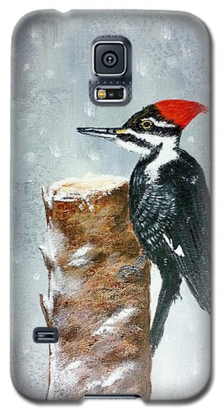 Woodpecker Galaxy S5 Case by Valorie Cross