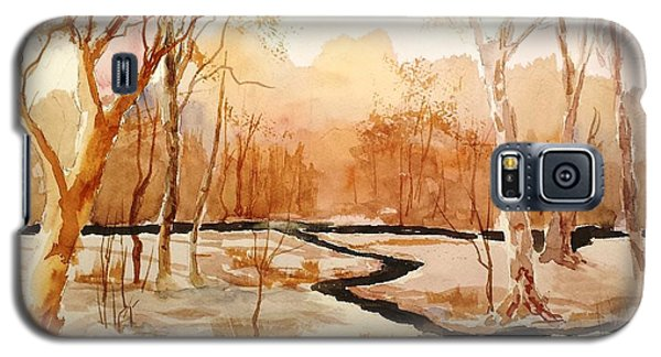 Woods By The Reservoir Galaxy S5 Case