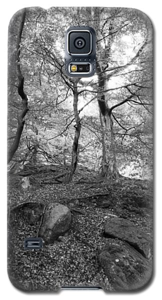 Galaxy S5 Case featuring the photograph Woods by David Isaacson