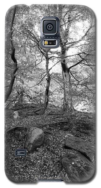 Woods Galaxy S5 Case