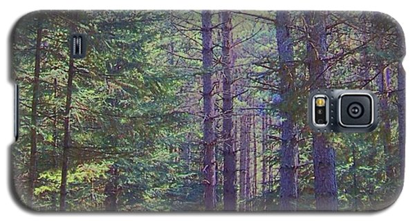 Galaxy S5 Case featuring the photograph Woods II by Shirley Moravec
