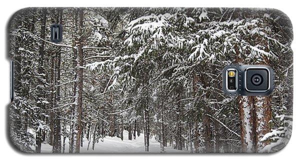 Woods In Winter Galaxy S5 Case