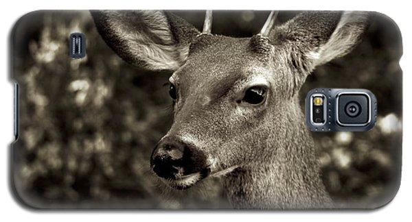 Woodside Deer Galaxy S5 Case by Alex King