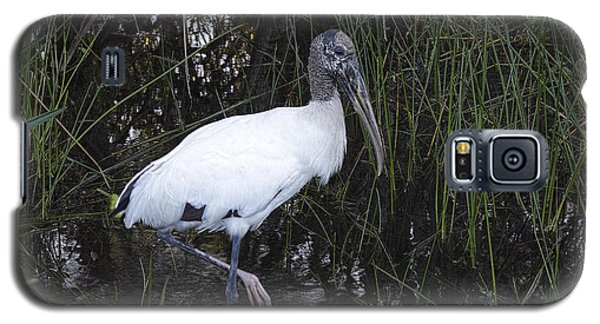 Woodstork Galaxy S5 Case