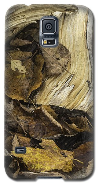 Galaxy S5 Case featuring the photograph Woodwork 4 by Michael Canning