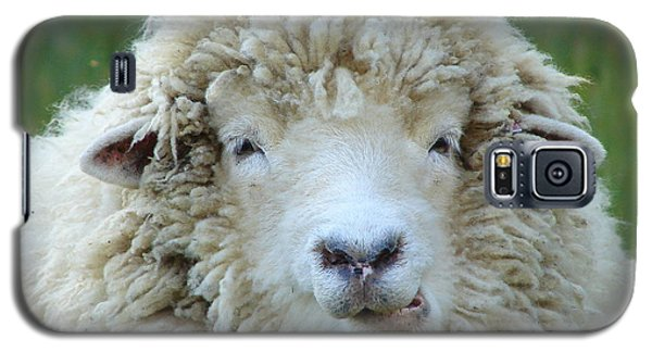 Wooly Sheep Galaxy S5 Case