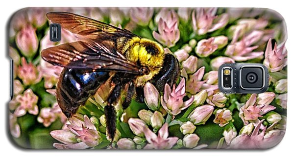 Busy Bee Galaxy S5 Case by JRP Photography