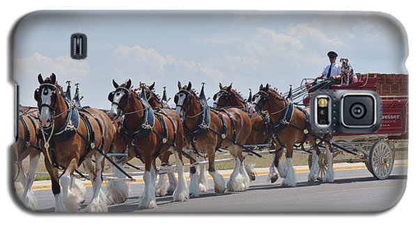 World Renown Clydesdales 2 Galaxy S5 Case