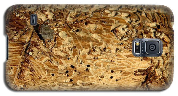 Galaxy S5 Case featuring the photograph Worm Wood - 1 by Kenny Glotfelty