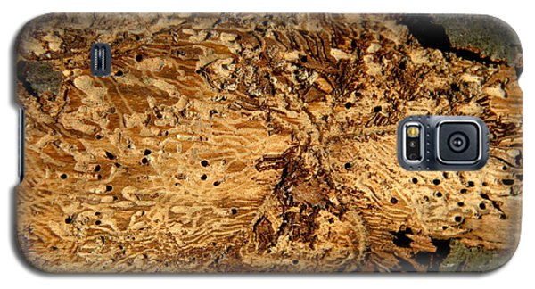 Galaxy S5 Case featuring the photograph Worm Wood - 2 by Kenny Glotfelty