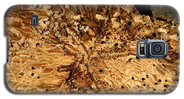 Galaxy S5 Case featuring the photograph Worm Wood - 3 by Kenny Glotfelty