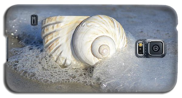 Worn By The Sea Galaxy S5 Case by Kathy Baccari