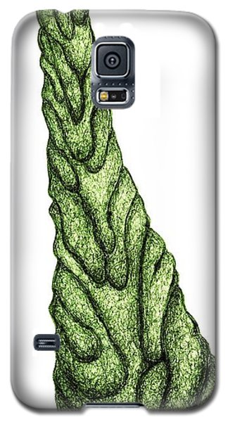 Worn By Time Galaxy S5 Case by Giuseppe Epifani