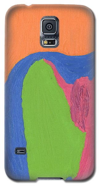 Worship Galaxy S5 Case by Mark Minier
