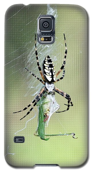 Galaxy S5 Case featuring the photograph Wrap It Up by Kathy Gibbons