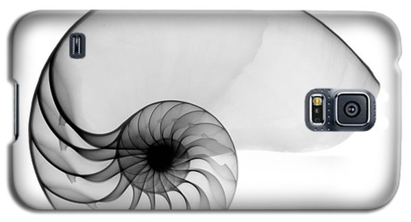 X-ray Of Nautilus Galaxy S5 Case