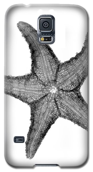 X-ray Of Starfish Galaxy S5 Case