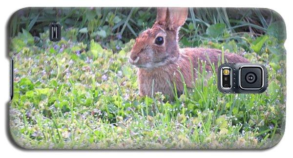 Yard Bunny 1 Galaxy S5 Case