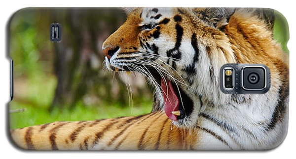 Galaxy S5 Case featuring the photograph Yawning Amur Tiger by Nick  Biemans