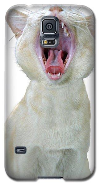 Yawning Cat Galaxy S5 Case