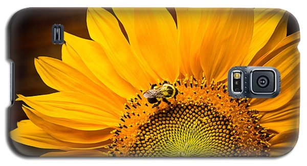 Galaxy S5 Case featuring the photograph Yellow And Black by Sara Frank