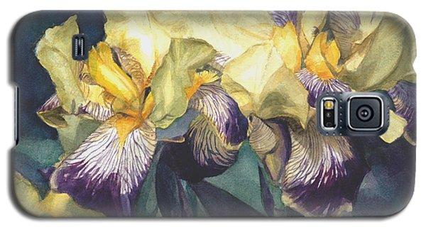Yellow And Purple Streaked Irises Galaxy S5 Case by Greta Corens