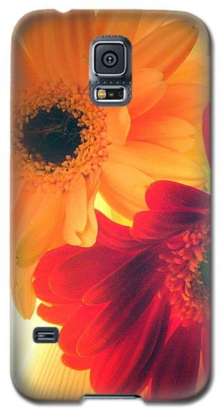 Yellow And Red Gerberas Galaxy S5 Case