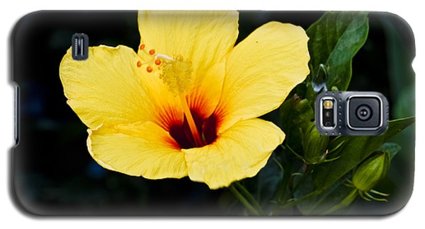 Yellow And Red Hibiscus Galaxy S5 Case