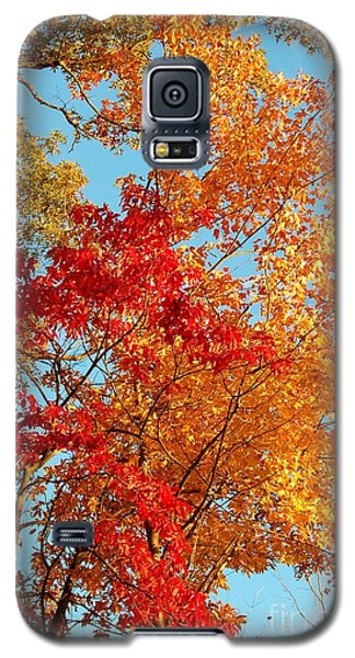 Yellow And Red Galaxy S5 Case