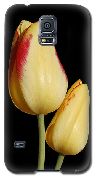 Yellow And Red Tulips  Galaxy S5 Case