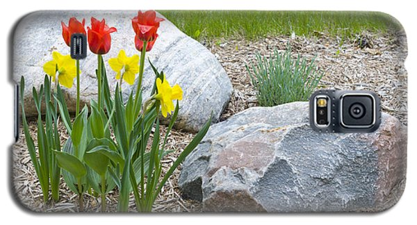 Yellow And Red Tulips With Two Rocks Galaxy S5 Case