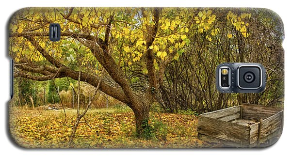 Yellow Autumn Leaves And Wooden Wagon Galaxy S5 Case