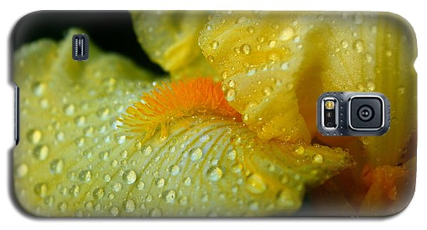 Yellow Beard Galaxy S5 Case