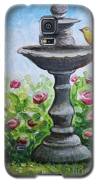 The Fountain Galaxy S5 Case by Elizabeth Robinette Tyndall