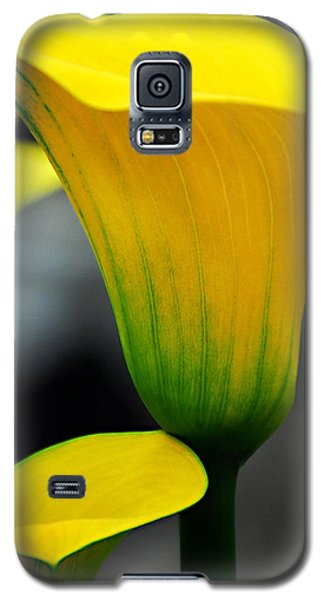 Galaxy S5 Case featuring the photograph Yellow Calla Lily by JoAnn Lense